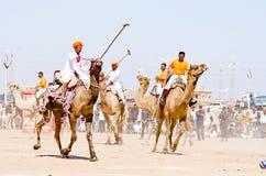 骆驼在沙漠节日期间的马球比赛在Jaisalmer,拉贾斯坦,印度,亚洲 免版税库存照片