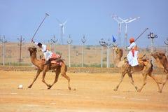 骆驼在沙漠节日期间的马球比赛, Jaisalmer,印度 免版税库存图片