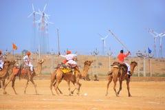 骆驼在沙漠节日期间的马球比赛, Jaisalmer,印度 免版税库存照片