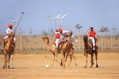 骆驼在沙漠节日期间的马球比赛, Jaisalmer,印度 图库摄影