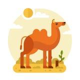 骆驼在沙漠 皇族释放例证