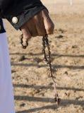 骆驼培训 免版税库存照片