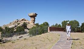 骆驼岩石看法在鼻子以后的掉下 图库摄影