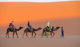 骆驼徒步旅行队有蓬卡车在撒哈拉大沙漠 免版税库存照片