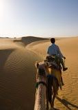骆驼徒步旅行队 图库摄影