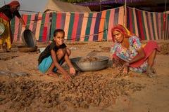骆驼收集器粪 免版税库存图片