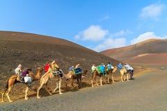 骆驼有蓬卡车与游人的 图库摄影