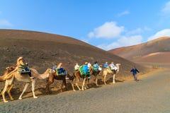 骆驼有蓬卡车与游人的 库存图片