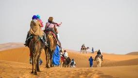 骆驼有蓬卡车审阅沙丘的在撒哈拉大沙漠,摩洛哥 图库摄影