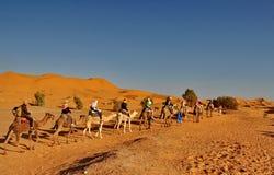 骆驼有蓬卡车的游人 免版税库存图片