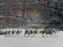 骆驼有蓬卡车,瓦地伦,约旦 免版税库存图片