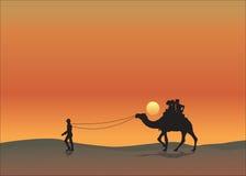 骆驼橙色沙漠背景日落 免版税库存图片