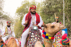 骆驼的Rajasthani人 图库摄影