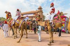 骆驼的Rajasthani人 免版税库存图片