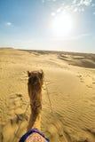 骆驼车手景色在塔尔沙漠,拉贾斯坦 免版税图库摄影