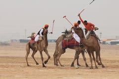 骆驼马球在Jaisalmer 免版税库存照片
