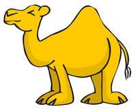 骆驼 皇族释放例证