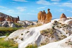 骆驼cappadocia岩石火鸡 库存图片