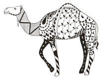 骆驼zentangle传统化了,导航,例证,徒手画的铅笔 免版税库存照片
