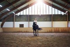 骑一匹棕色马的俏丽的妇女 库存照片