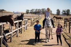 骑一匹马的孩子在大农场 库存照片