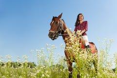 骑一匹马的少妇在用花装饰的草甸 库存图片