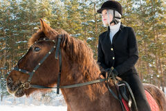 骑一匹马的年轻美丽的女孩骑师在冬天森林里 免版税图库摄影