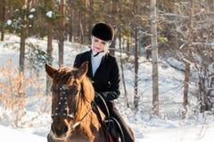 骑一匹马的年轻美丽的女孩骑师在冬天森林里 库存图片