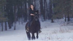 骑一匹黑马的可爱的长发女性车手通过在冬天领域的漂泊 免版税库存图片