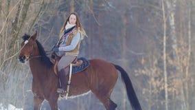 骑一匹黑马的年轻女性车手通过漂泊在冬天结冰的森林里 库存图片