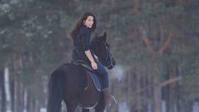 骑一匹黑马的诱人的长发女性车手通过深刻的漂泊在乡下,背面图 图库摄影