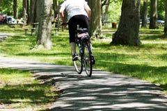 骑一辆自行车在公园 免版税库存图片