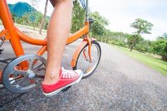 骑一辆自行车的妇女在公园 库存照片
