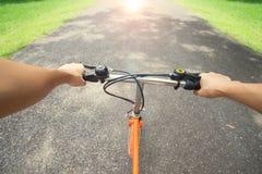 骑一辆自行车的妇女在公园 图库摄影