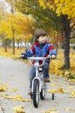 骑一辆自行车的男孩在秋天公园 图库摄影