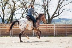 骑在桶赛跑的事件的年轻女牛仔一匹美丽的油漆马在圈地 库存照片