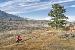 骑在科罗拉多山麓小丘的一辆肥胖自行车 免版税图库摄影