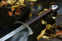 骑士剑 库存照片