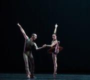 骑士古典芭蕾` Austen汇集` 库存照片