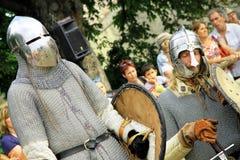 骑士战斗 库存照片