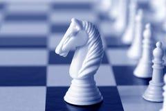 骑士白色 免版税库存照片