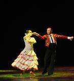 骑士这西班牙斗牛舞蹈这奥地利的世界舞蹈 库存图片