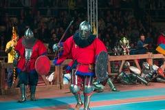 骑士进行攻势 免版税库存图片