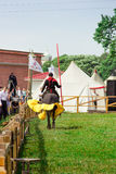 骑士 图库摄影