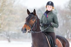 骑她的海湾马的少妇在冬天领域 库存照片