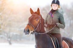 骑她的海湾马的少妇在冬天领域 免版税库存照片