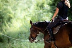 骑她的马的少妇画象 免版税图库摄影
