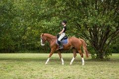 骑她的马的少妇 库存照片