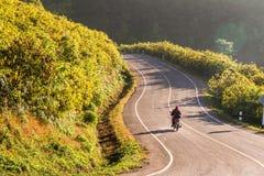 骑摩托车通过花的领域在山 免版税库存照片