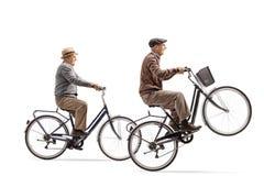 骑有做自行车前轮离地平衡特技的他们中的一个的前辈自行车 图库摄影